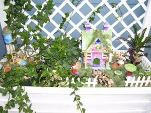 A Fairy Garden with Plants Indoor Fairy Garden