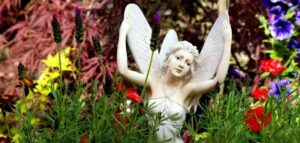 Whats in fairy gardens header