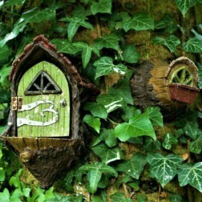 Fairy Circle Garden Logo Background