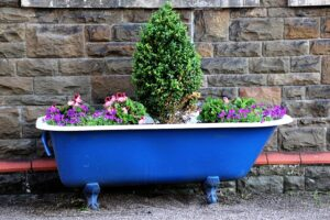 A Fairy Garden with Plants Tub Container