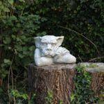 A Fairy Garden with Plants Stump Troll