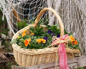 A Fairy Garden with Plants Container Basket