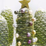 Decorate Pine Cone