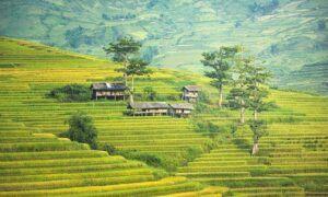 the-village-1822441_640