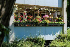 Landscaping patio garden