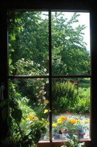 garden-2261847_640