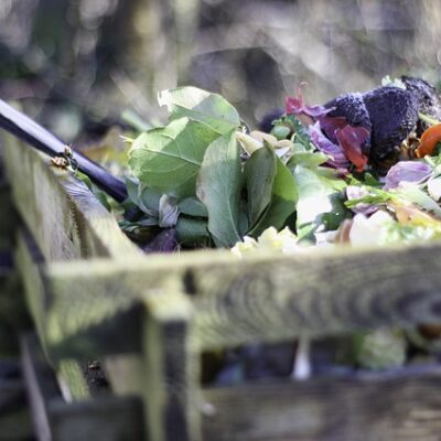 How to Make a Garden: Compost Tips for Gardening Success compost featured image