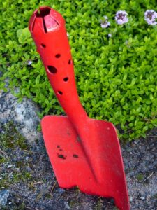 top 10 gardening ideas for starting a new garden trowel