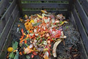 How to Make a Garden: Compost Tips for Gardening Success Composting Basics
