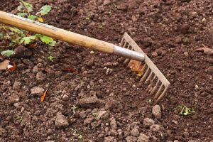top 10 gardening ideas for starting a new garden rake