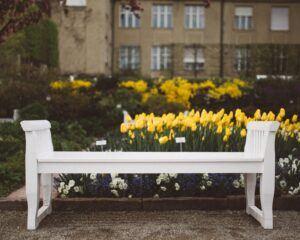 white bench in garden courtyard