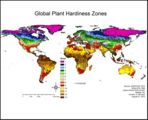 Garden design ideas hardiness zone