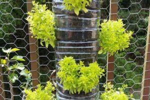 Garden design ideas diy water bottle