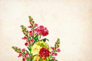 flower-3973226_1280