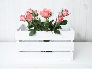 flowers-2676662_1280