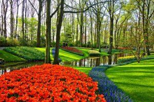 Garden design ideas solid color