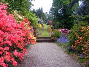 garden-470704_640