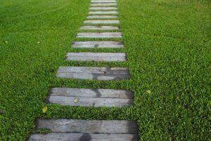 garden-path-1979619_640