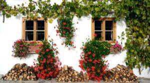 Garden design ideas pattern woodpileGarden-design-ideas-pattern-woodpile
