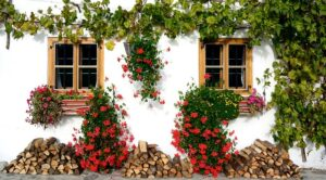 Simple Landscaping Ideas to Beautify Your Life balance framesSimple-Landscaping-Ideas-to-Beautify-Your-Life-balance-frames
