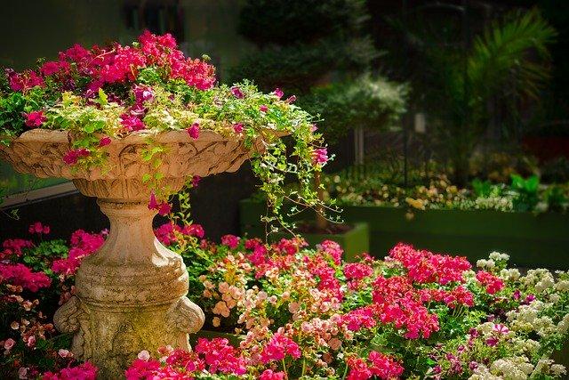 Fairy Circle Garden