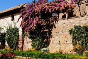 Garden design ideas crescendoBeautiful Garden Design Ideas ❀ Fairy Circle Garden