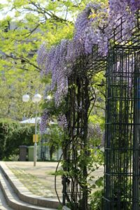 Simple Landscaping Ideas to Beautify Your Life balance frameSimple-Landscaping-Ideas-to-Beautify-Your-Life-balance-frame