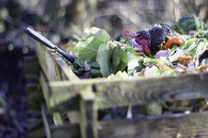 how to garden vegetables compost article link