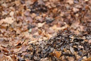how to garden vegetables pile of leaves