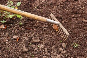 how to garden vegetables soil