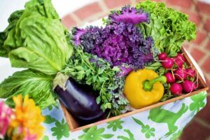 how to garden vegetables display