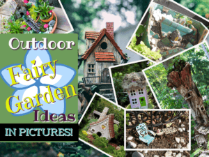 outdoor fairy garden ideas in pictures