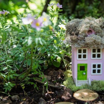 outdoor fairy garden ideas dwelling