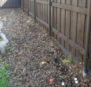 when to start gardening composting beds