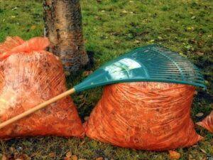 autumn-bags