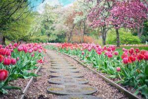 when to start gardening spring