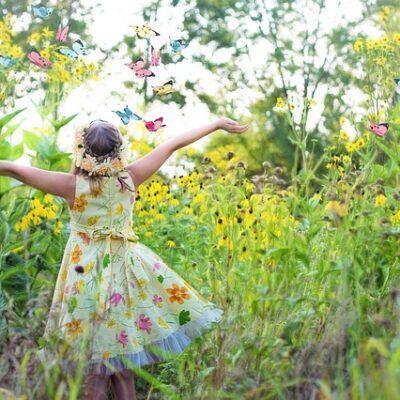 small butterfly garden plans butterfly garden