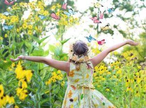 small butterfly garden plans butterfly gardensmall_butterfly_garden_plans_butterfly_garden