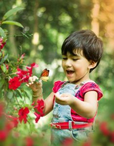 small butterfly garden plans child butterflysmall_butterfly_garden_plans_child_butterfly